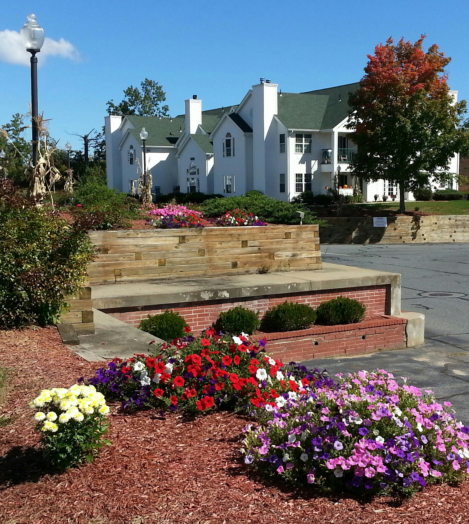 Rosemeade apartment building with white siding and green roof sits behind a raised flower bed with red stones and purple, red, and yellow petunias